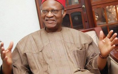 Pursue education, entrepreneurship to curb poverty, youths told – Anyaoku